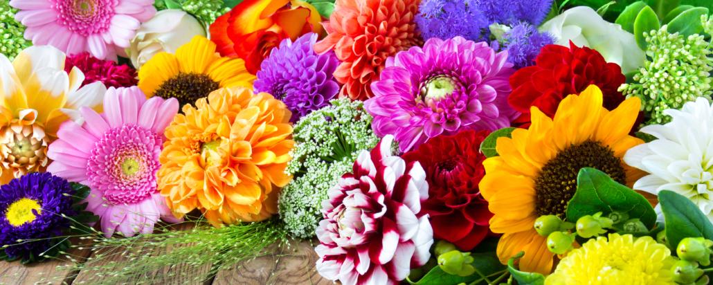 Frische Blumenauswahl